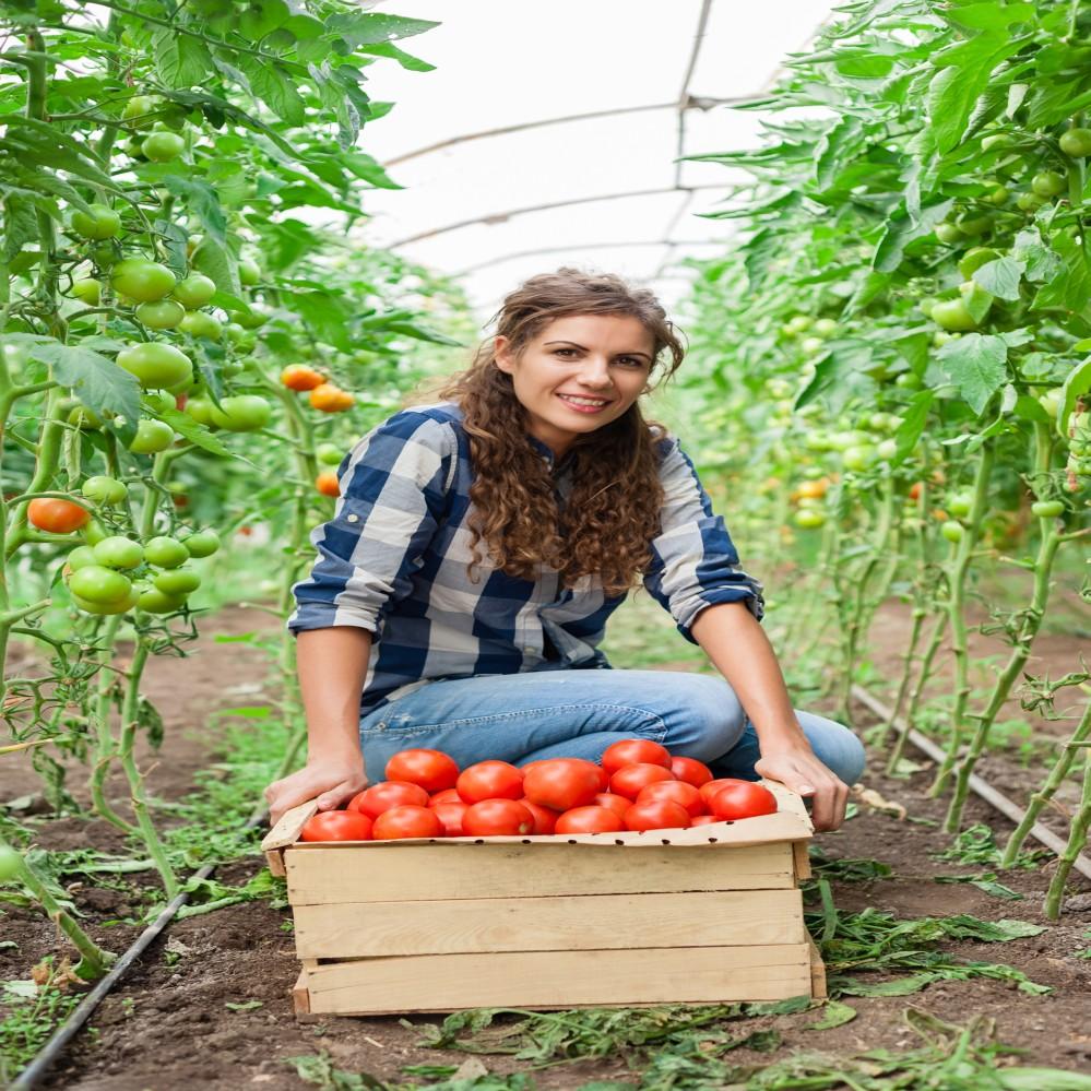 najlepszy_kredyt_dla_rolnika_na_dowolny_cel kredyty hipoteczne kredyty gotówkowe
